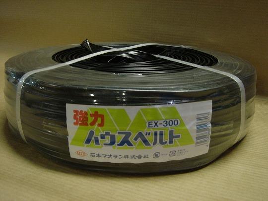 20070214マイカ線 (3).jpg