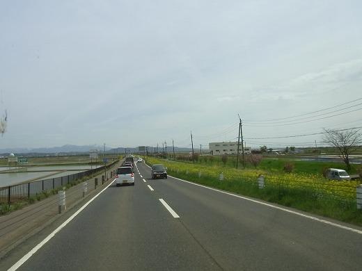 RIMG1287.jpg